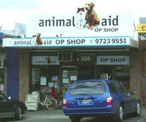 Animal-aid-croydon
